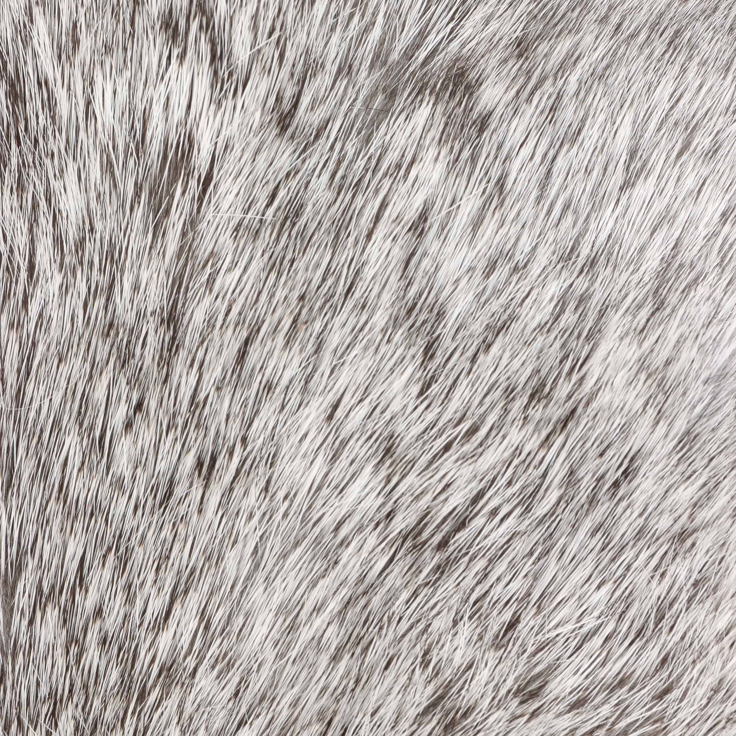 Hatfield Lapeer grau